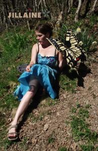 jill laine feutrée :  le papillon Machaon