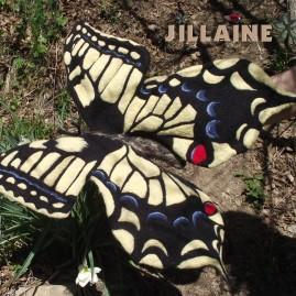 le papillon machaon, Outil pédagogique